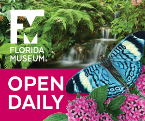 Florida Museum of Natural History Open Daily