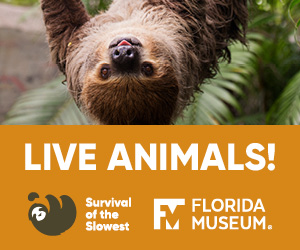 Florida Museum of Natural History Survival of the Slowest