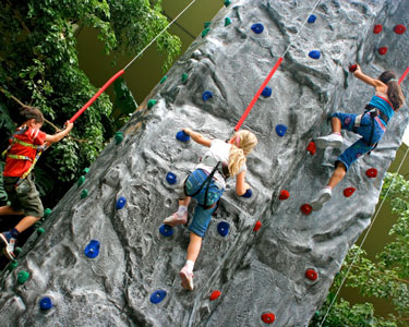 Kids Gainesville: Rock Climbing - Fun 4 Gator Kids