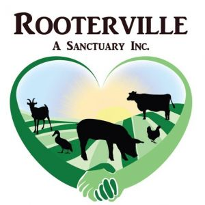 Rooterville Sanctuary Parties